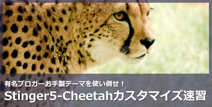 stinger5-cheetah-customize-00